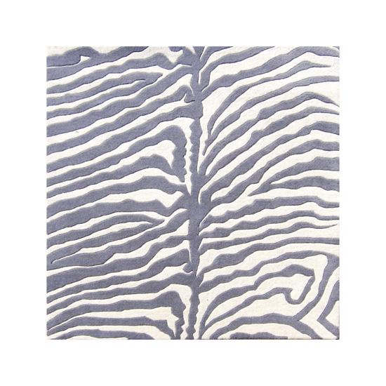 Zebra 6u0027 Square