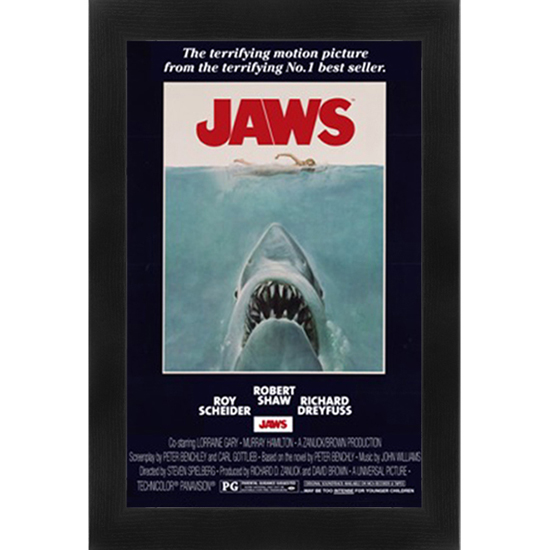 26 X38 Framed Movie Or Tv Posters