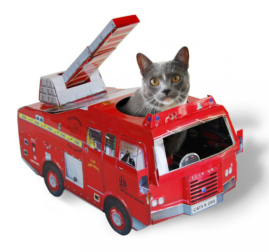 Cat Toys And Playhouses