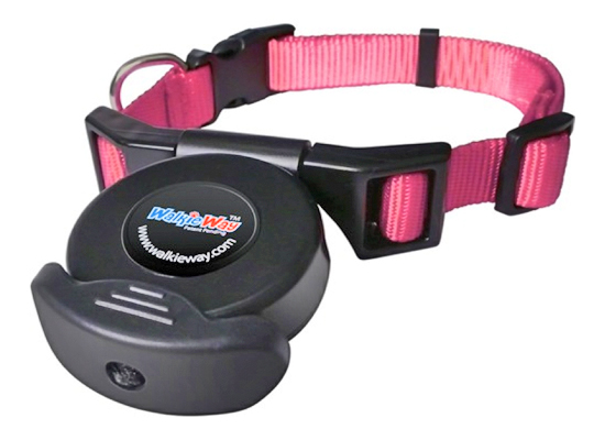 Walkie Way Dog Safety Collar And Leash